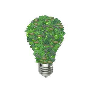 électricité verte france