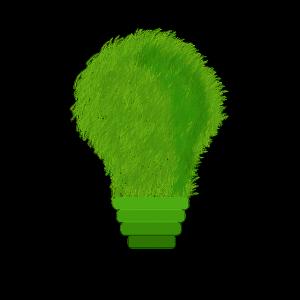 avis électricité verte